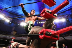 3 Ring of Honor_-16