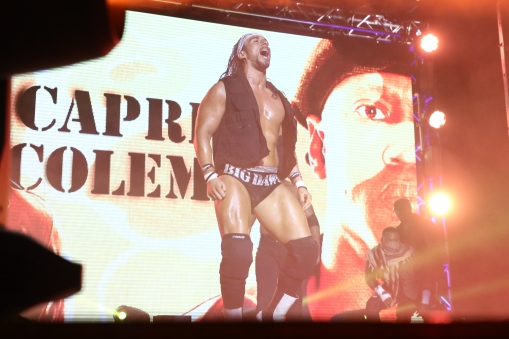 5 Ring of Honor_