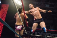CHAMPIONSHIP WRESTLING FROM HOLLYWOOD CWFH-0007203