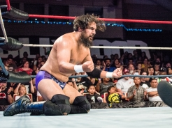 CHAMPIONSHIP WRESTLING FROM HOLLYWOOD CWFH-0007348