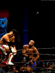 RING OF HONOR-0006442