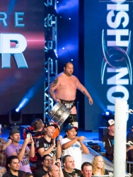 RING OF HONOR-0006517