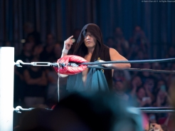 RING OF HONOR-0006792